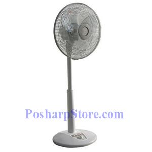 Picture of SPT SF-1467 14-Inch Oscillating Standing Fan