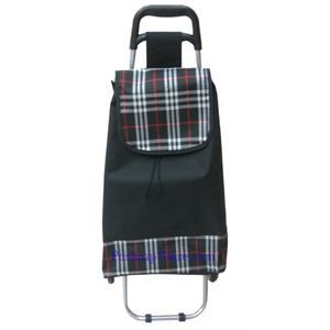 Picture of Canvas Folding Shopping Cart with Black Color