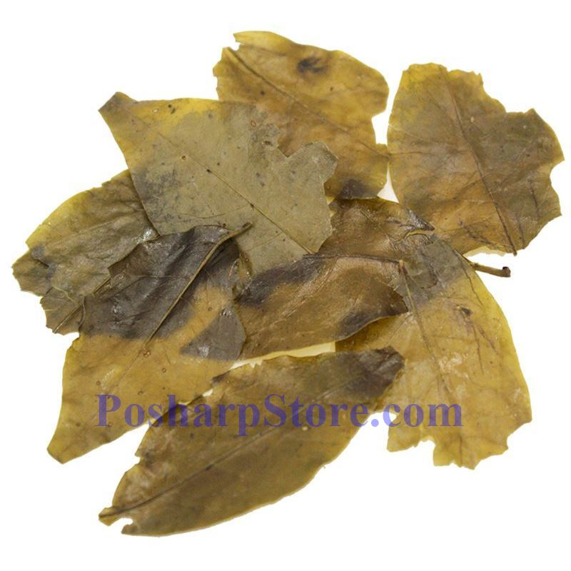 Picture for category Wild Kuding Tea Leaves 2 Oz