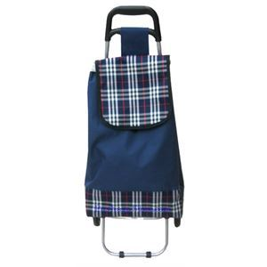 Picture of Canvas Folding Shopping Cart with Blue Color