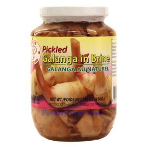 Picture of  White Orchid Pickled Galanga in Brine 1 Lb