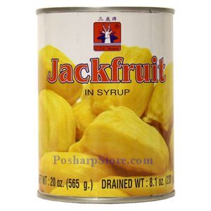 Picture of CTF Brand Jackfruit in Syrup 20 Oz