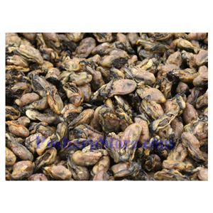 Picture of Dried Oyster 10 Oz