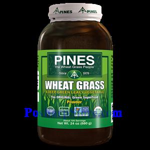 Picture of Pines Wheatgrass Organic Wheat Grass Powder 24 Oz