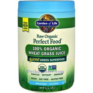 Picture of Garden of Life RAW Organic Young Wheat Grass Juice Powder 4.2 Oz