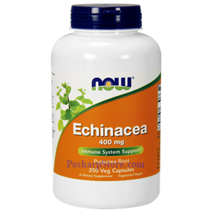 Picture of Now Foods Echinacea 400 mg 250 Capsules