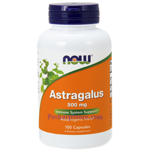 Picture of Now Foods Astragalus 500 mg 100 Capsules